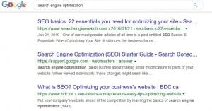 SERP snippet example